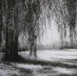 Weeping Willow Tree Drawing in Charcoal by Diana Moore - New Zealand Artist