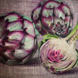 Artichoke Drawing in Coloured Pencil by Diana Moore - New Zealand Artist